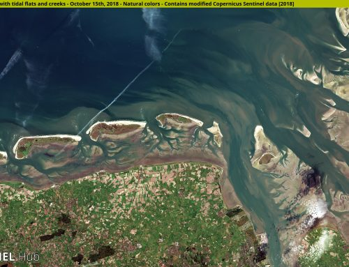 Innovation fuelled by Earth Observation: what it means for your business